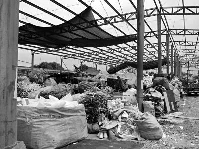 男子占农用地建6千平米废品回收站:有人来查再说